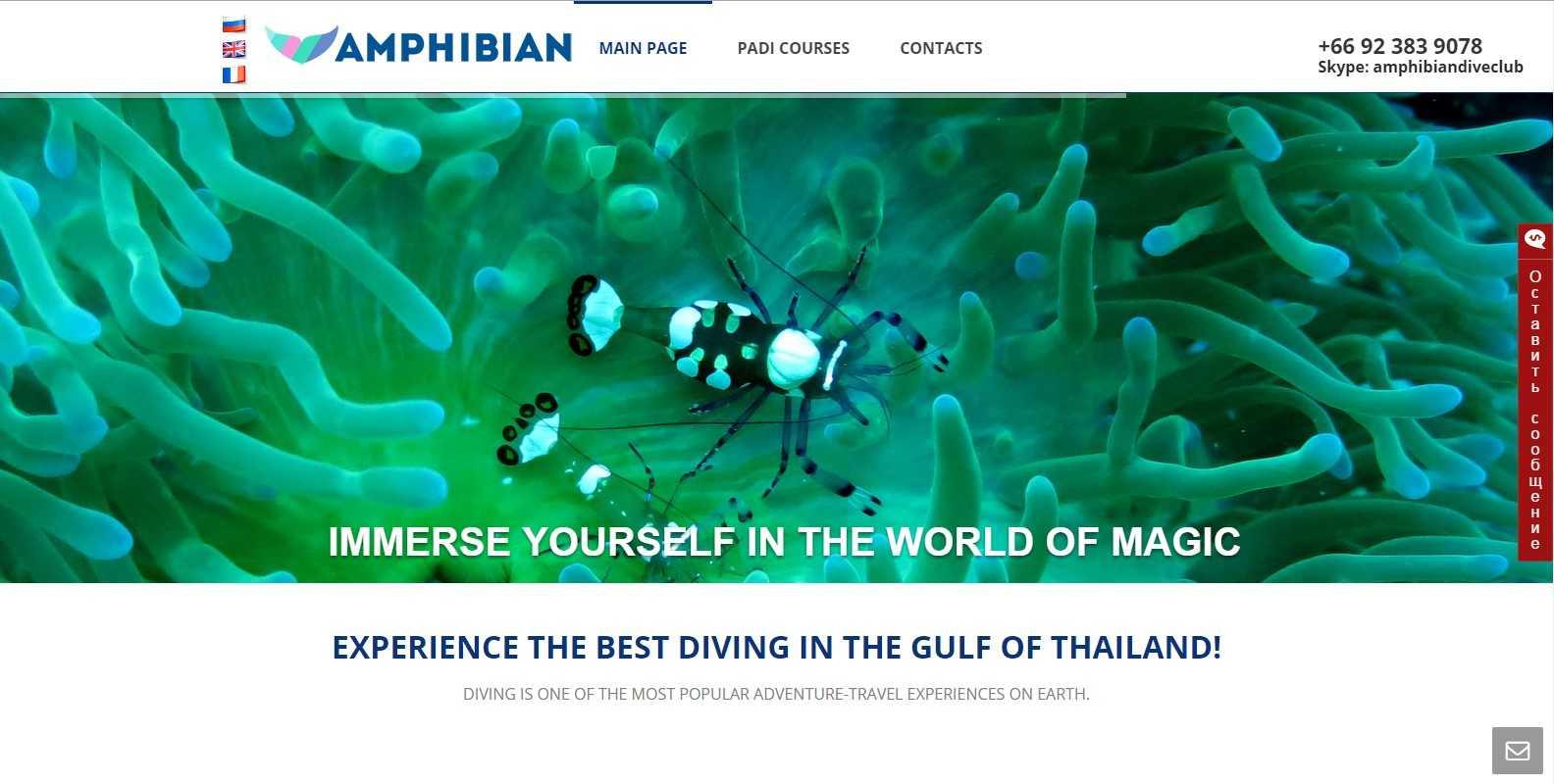Поддержка WEB-сайта Amphibian Dive Club www.amphibiandiveclub.com